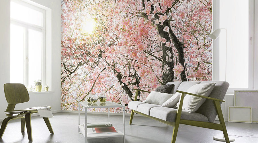 Non Woven Wallpaper Design Shop in Gurgaon Dwarka Delhi